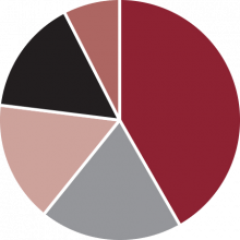 Industry Share by OEM Brand Pie Chart