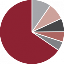 Industry Share by OEM Model Pie Chart