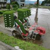 Specialty Cultivating Equipment